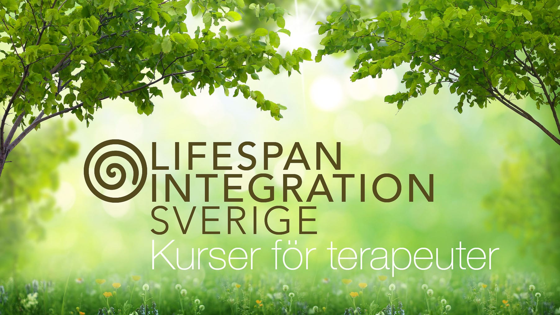 Lifespan Integration, kurser i sverige